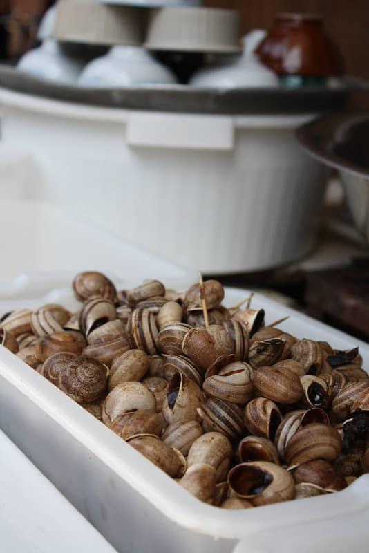 Got Escargots?
