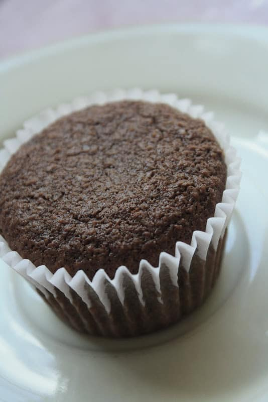Chocolate Flaxseed Muffins with Apples