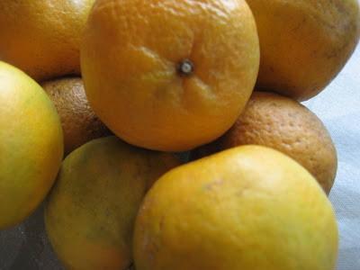 Tangerine Mousse